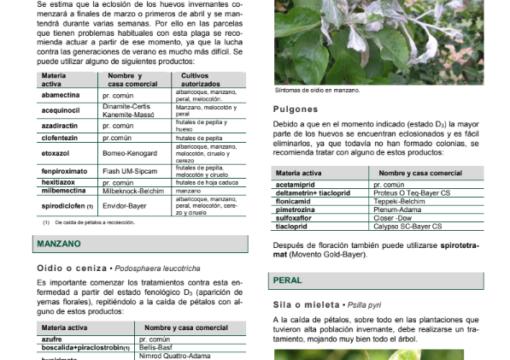 BOLETÍN DE AVISOS FITOSANITARIOS Nº8